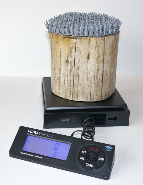 Raptor Weighing Scale with Block