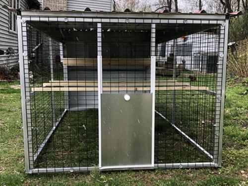 chicken-mews-free-range-door-web.jpg