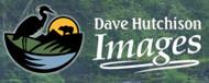 Dave Hutchison Images (Victoria, BC)