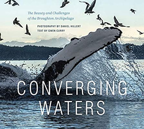 Converging Waters by Gwen Curry