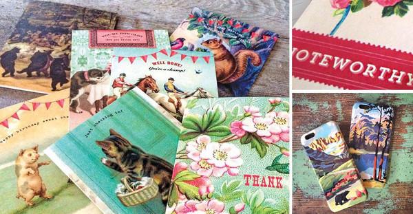 Cartolina® Curious Collection