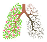 Respiratory Series - Harmonizing Lungs