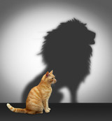 Gain courage for the Transitions in Your Life