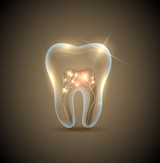 Biological Dentistry Course (Including 8 Libraries)