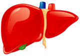 Liver Assessment and Liver Solutions