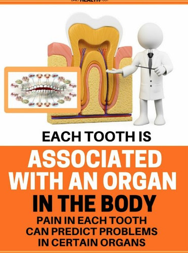 Biological Dentistry - Have the Healthiest Teeth for Life