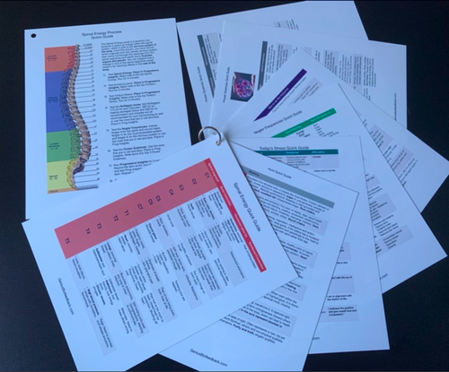 Understand the relationship between all your Genius Biofeedback results with these powerful desk reference cards.