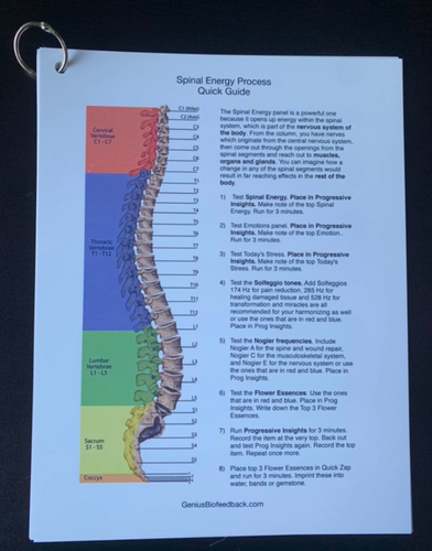 Quick Spinal Balancing Protocol. Begin your sessions with the spinal protocol to open the energetics of the body.