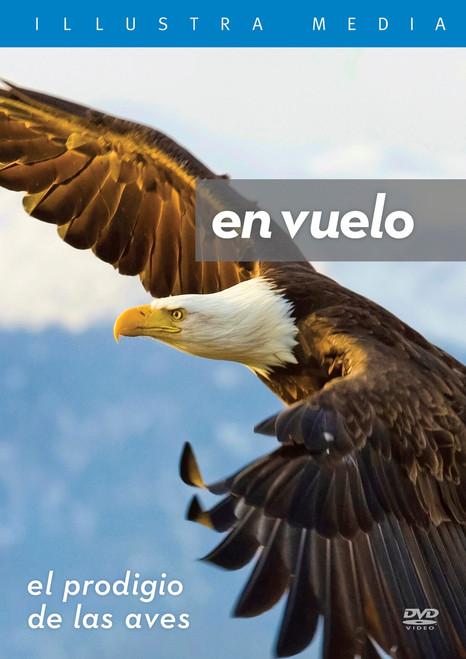 Flight: The Genius of Birds Spanish DVD