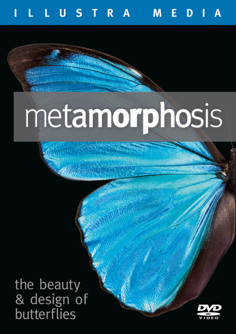 Metamorphosis: The Beauty and Design of Butterflies VOD
