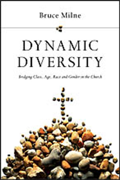 Dynamic Diversity (paperback)