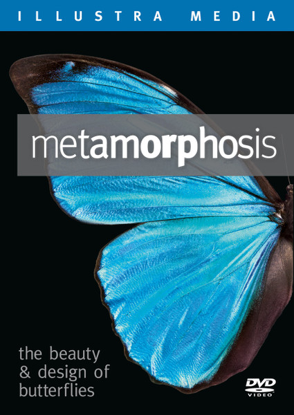 Metamorphosis: The Beauty and Design of Butterflies Blu-ray