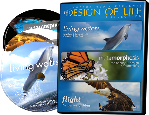 Design of Life Collection 3-DVD Set