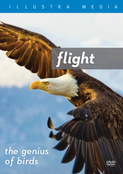 Flight: The Genius of Birds VOD