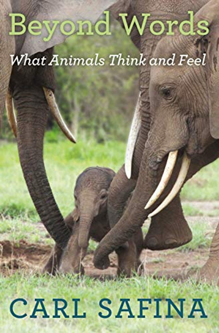 Beyond Words What Animals Think and Feel