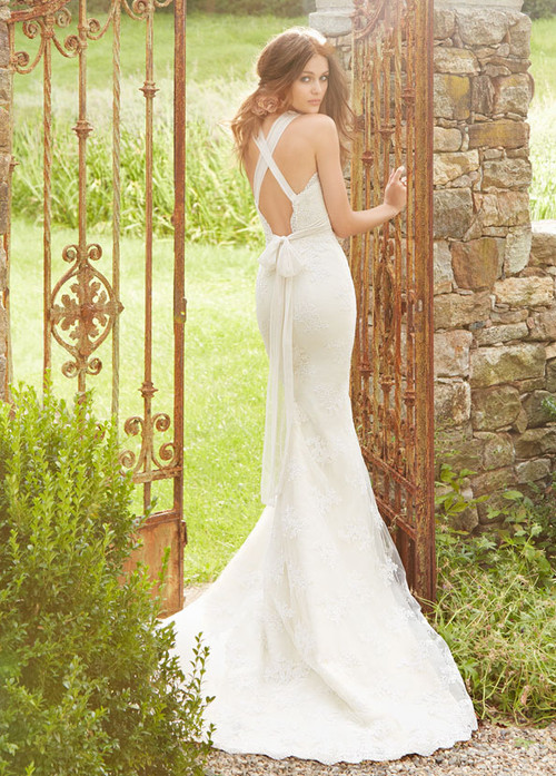 Blush by Hayley Paige Wedding Dress Clementine (1351)