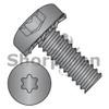 4-40X1/4  Six Lobe Pan Head External Tooth Sems Machine Screw Full Thread Black Zinc Bake (Box Qty 10000)  BC-0404ETPBZ