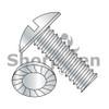 1/4-20X1/2  Slotted Truss Serrated Machine Screw Fully Threaded Zinc (Box Qty 3000)  BC-1408MSTS