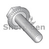 6-32X3/8  Serrated Hex Flanged Washer Full Thread Screw 18-8 Stainless Steel (Box Qty 5000)  BC-0606MWW188