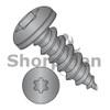 10-16X5/8  6 lobe Pan Self Tapping Screw Type A B Full Thread 18 8 Stainless Steel Black Ox (Box Qty 3000)  BC-1010ABTP188B
