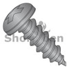 6-18X3/4  Phillips Pan Self Tap Screw Type A Full Thread 18 8 Stainless Steel Black Ox (Box Qty 5000)  BC-0612APP188B