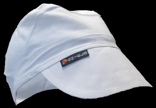 Shield Painters Cap