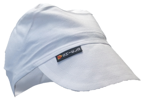Shield Painters Cap