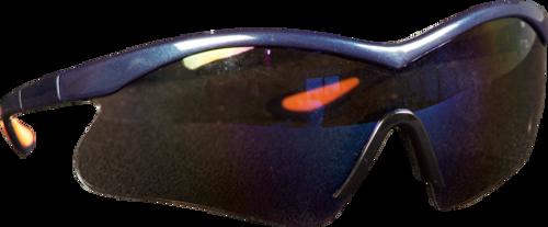 Shield Wrap-Around Safety Specs
