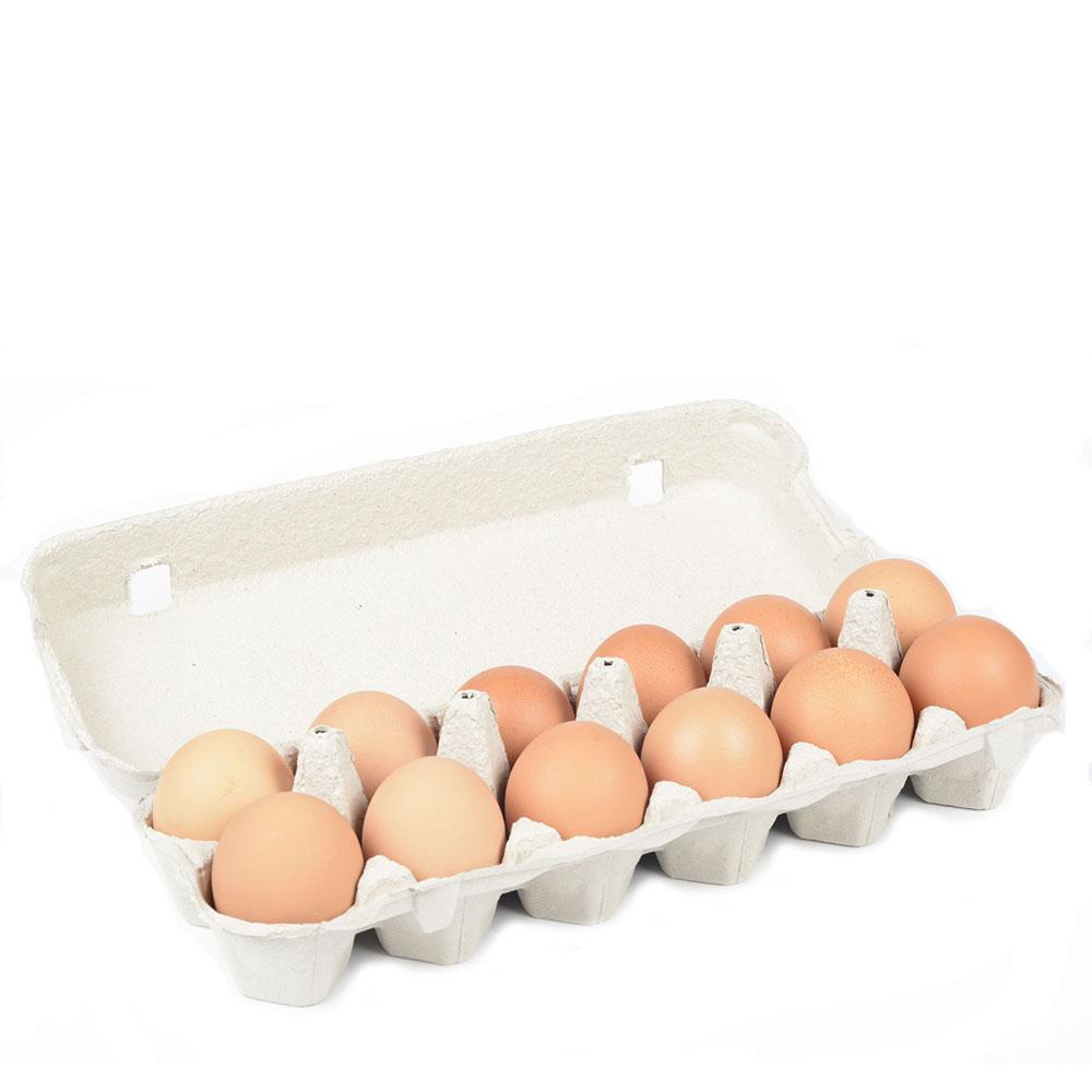 12 Eggs (Medium)