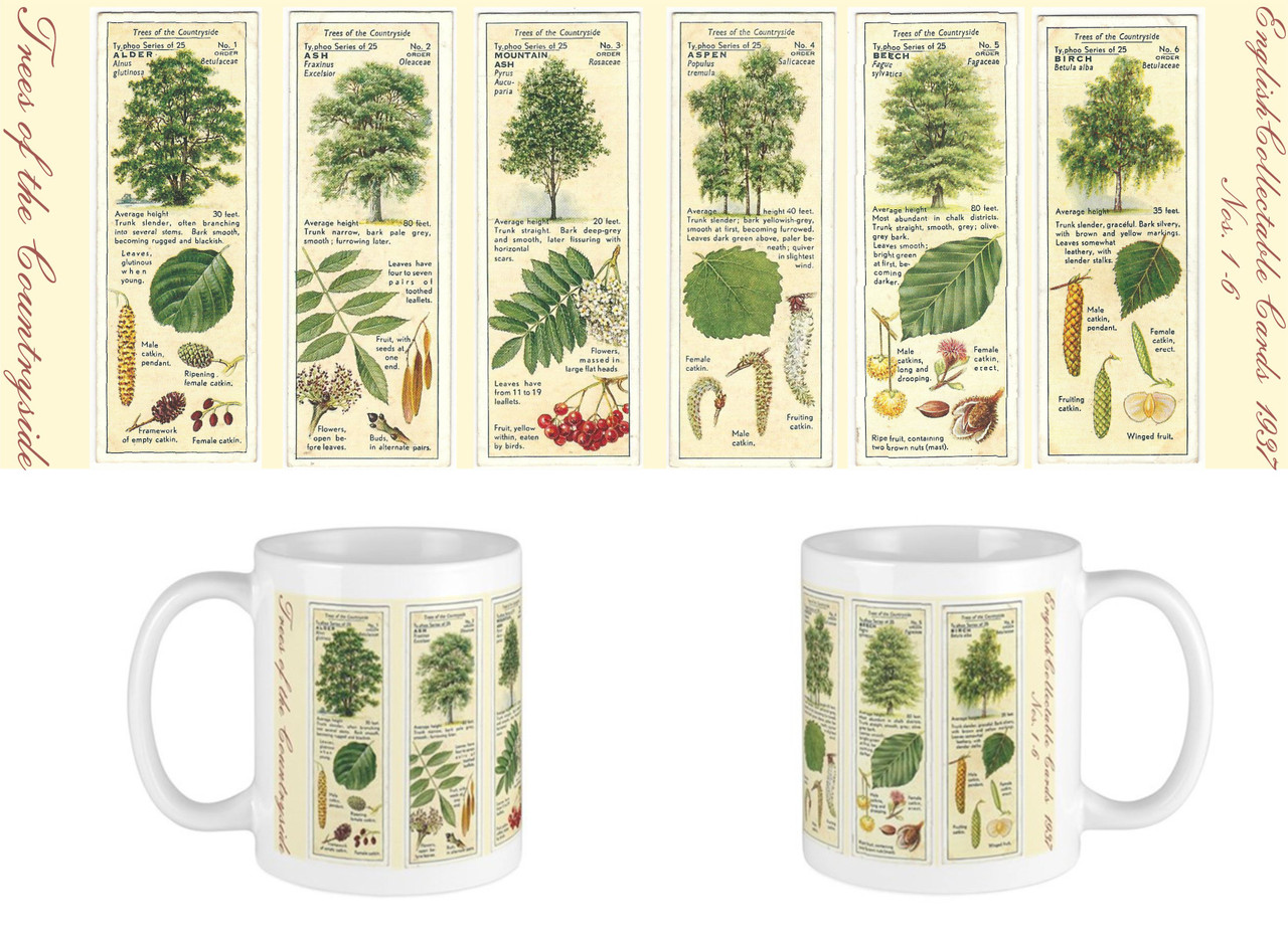 Trees of the Countryside 1-6
