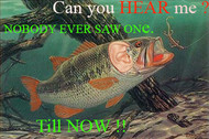 ​Can You Hear Me NOW