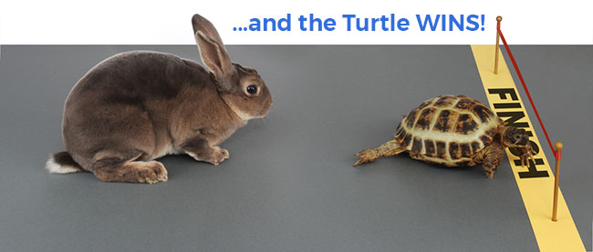 Always go as slow as you can with acid peels. It is NOT a rush to the top. This is the race where the turtle always wins.
