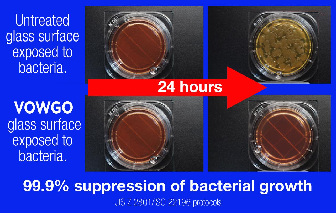 bacteria-growth.jpg