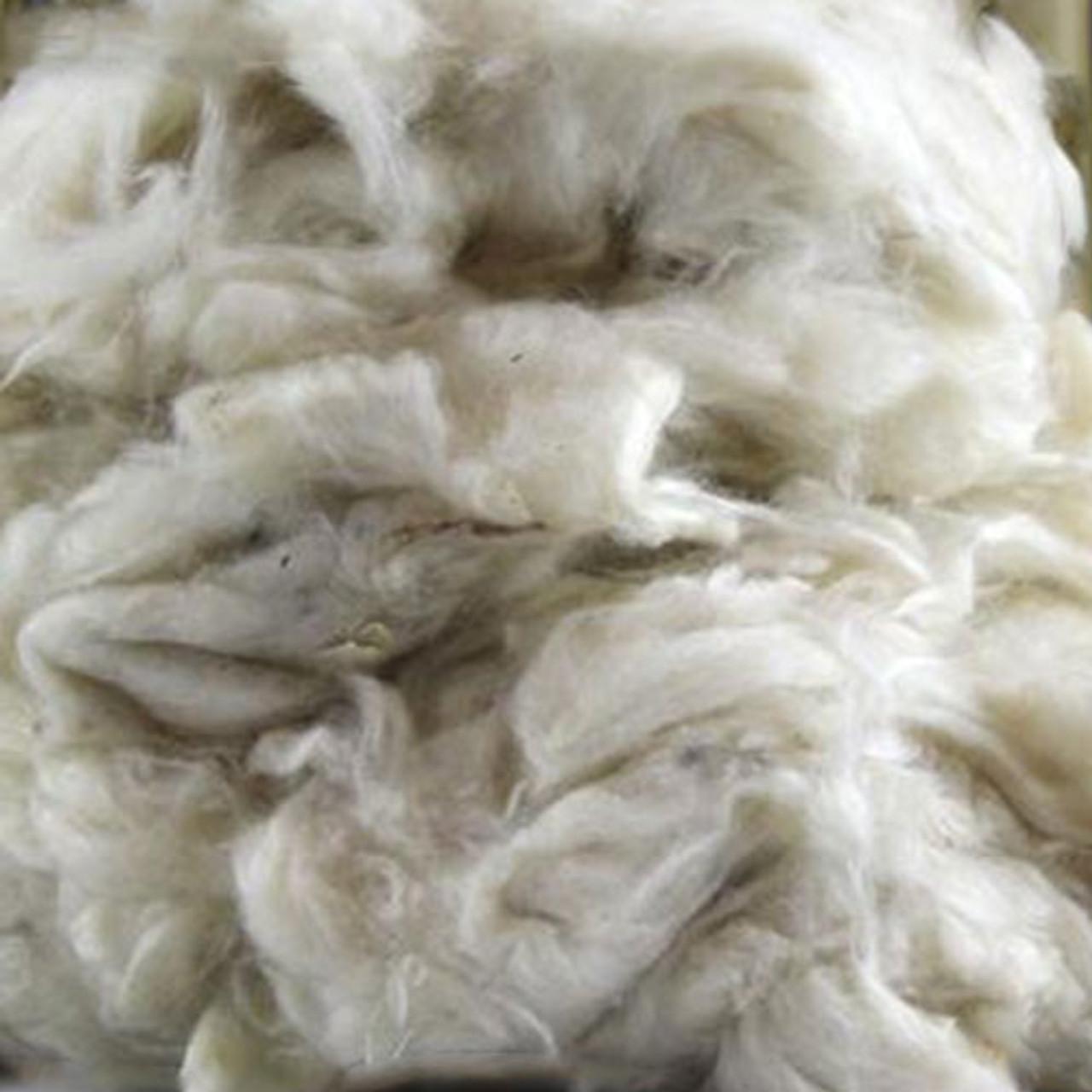 Kapok Wool Tree fibres. Kapok fibres loose from 11,36 €//kg natural filling