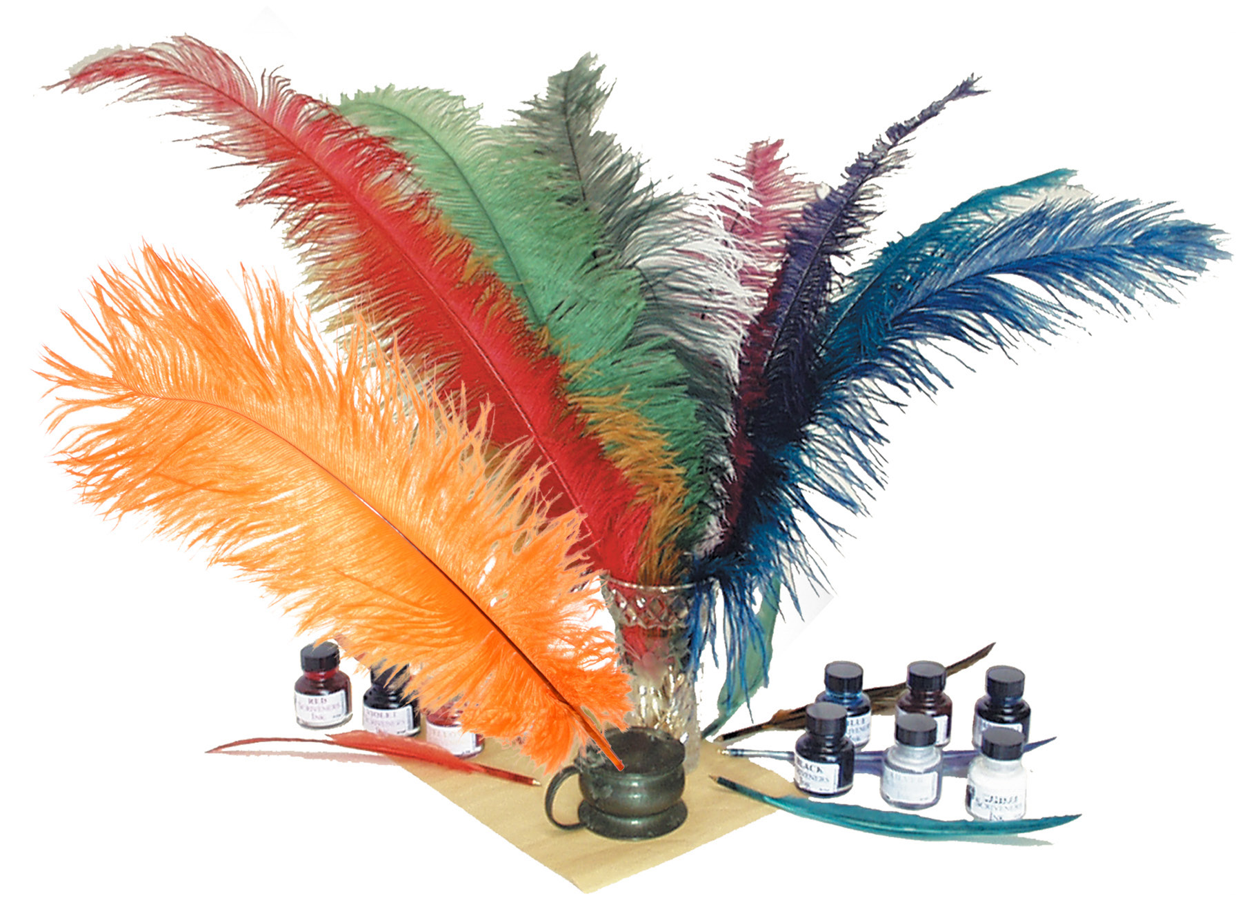 Ostrich feathers with customised ink labels