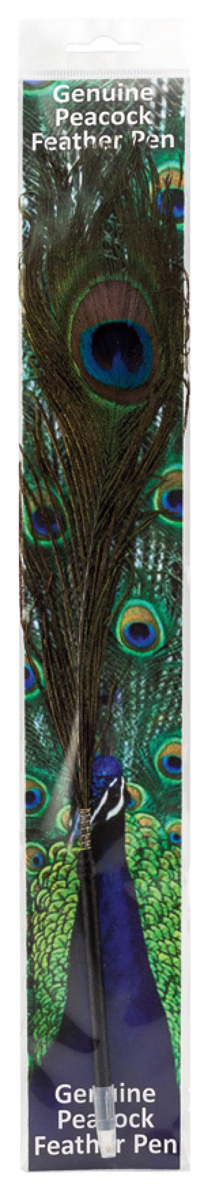 Packaged genuine Peacock feather pen