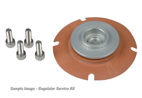 Aeromotive 13009 Aeromotive Regulator Repair/Service Kit for 13301/13351