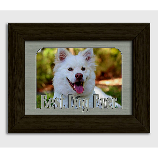 Best Dog Ever Tabletop Picture Frame - Holds 4x6 Photo - Multiple Color Options