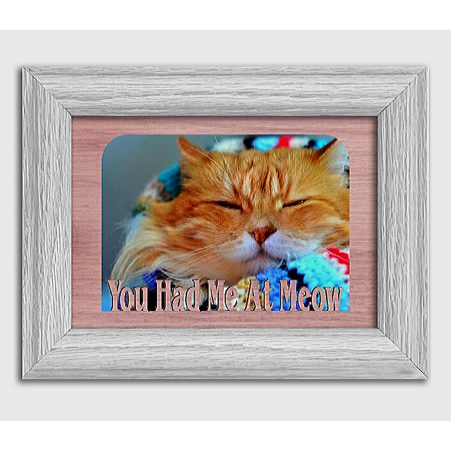 You Had Me At Meow Tabletop Picture Frame - Holds 4x6 Photo - Multiple Color Options