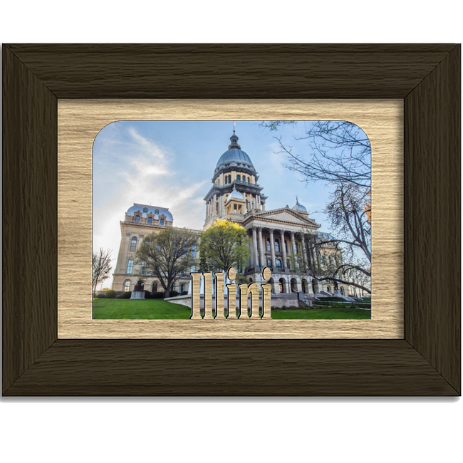 Illini Tabletop Picture Frame - Holds 4x6 Photo - Multiple Color Options