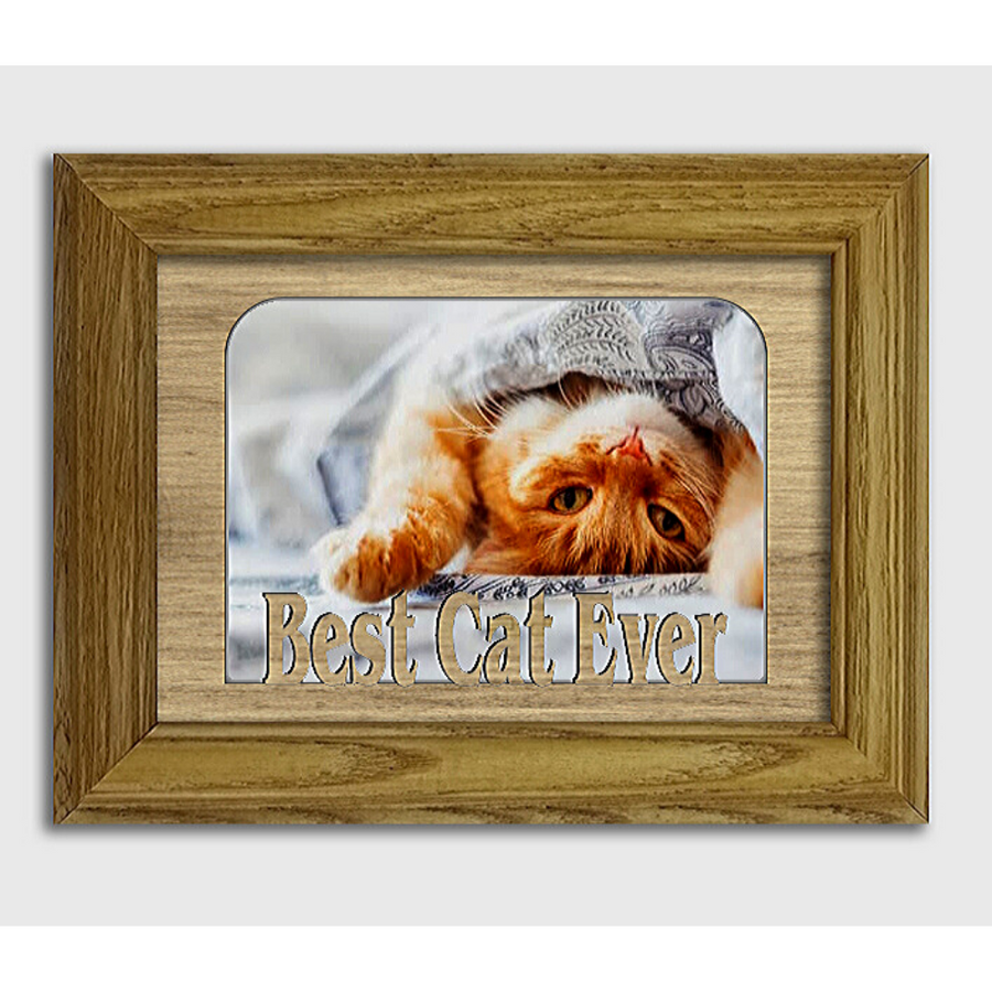 Best Cat Ever Tabletop Picture Frame - Holds 4x6 Photo - Multiple Color Options
