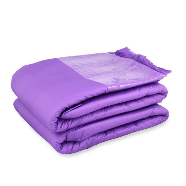 Violet Seduction Nighttime Briefs - Trial (2-pack)