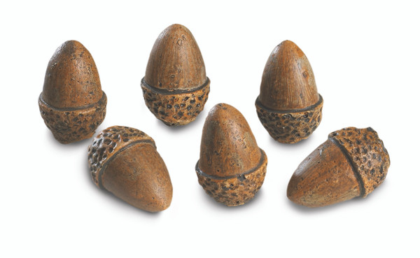 Real Fyre Acorns Set of 6