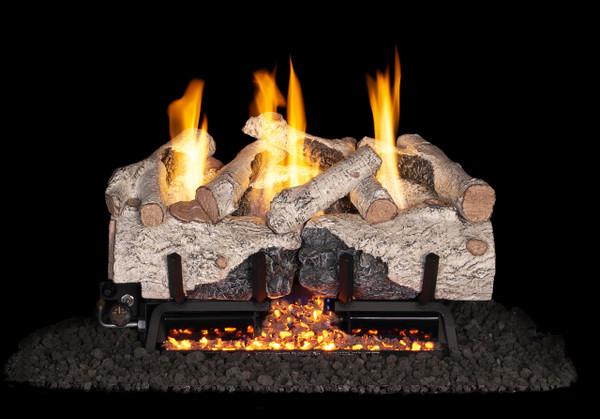 Real Fyre Charred Alpine Birch Vent-Free Gas Logs (CHAB-24), 24-Inch