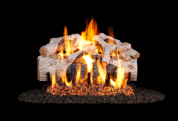 Real Fyre Charred Mountain Birch Vented Gas Log (CHMBW-24), 24-Inch