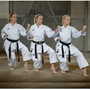 """Tenno Premium II"" KATA Uniform (WKF approved) 200cm (0491-1200)"