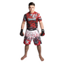 "TOP TEN MMA Shorts ""SAMURAI"" Design I"