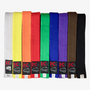 Belts Single Plain Colour Child