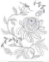 Dreamy Botanicals - FREE Colouring Page