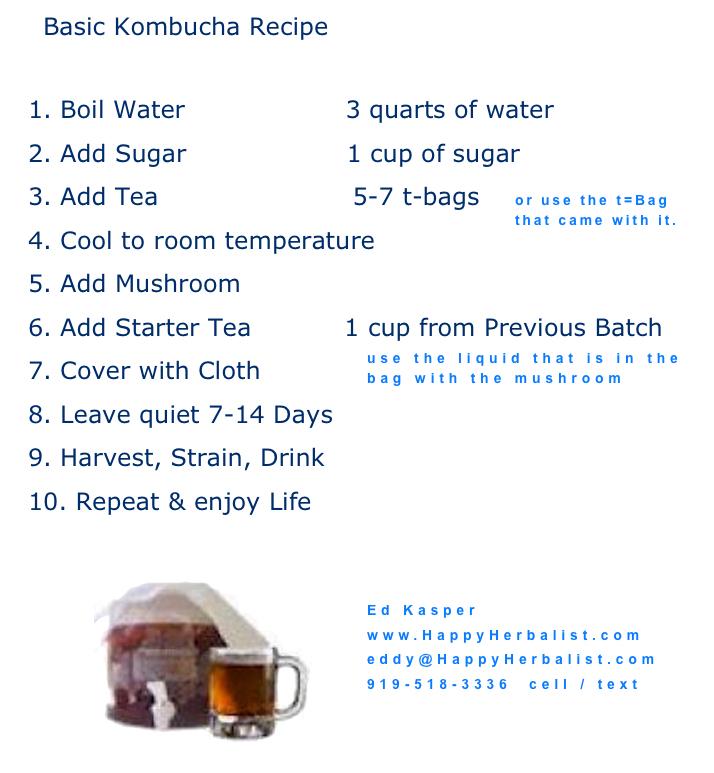 basic-kombucha-recipe-.jpg